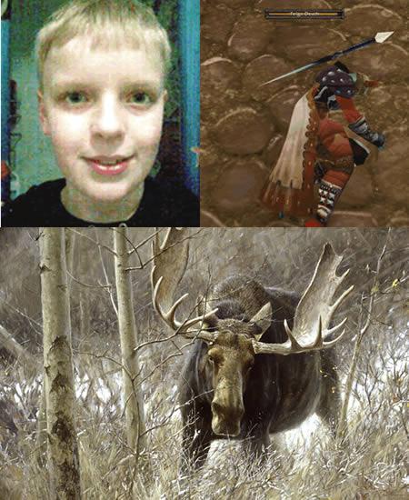 a429_moose